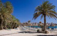 Территория пальмового пляжа