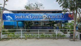 Аквариум и зоопарк